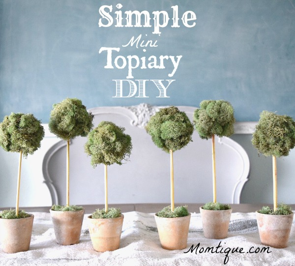 Simple Mini Topiary DIY